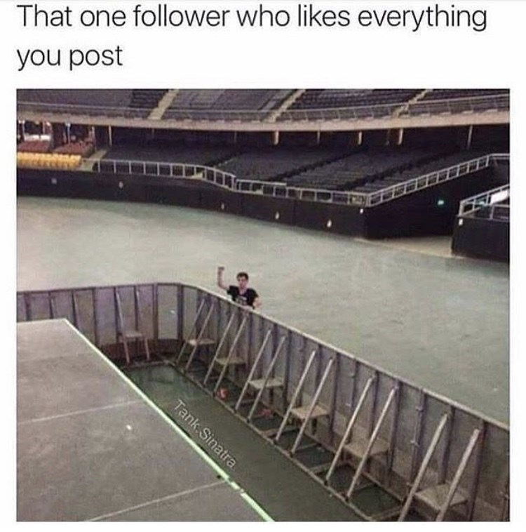 Product - That one follower who likes everything you post Tank Sinatra