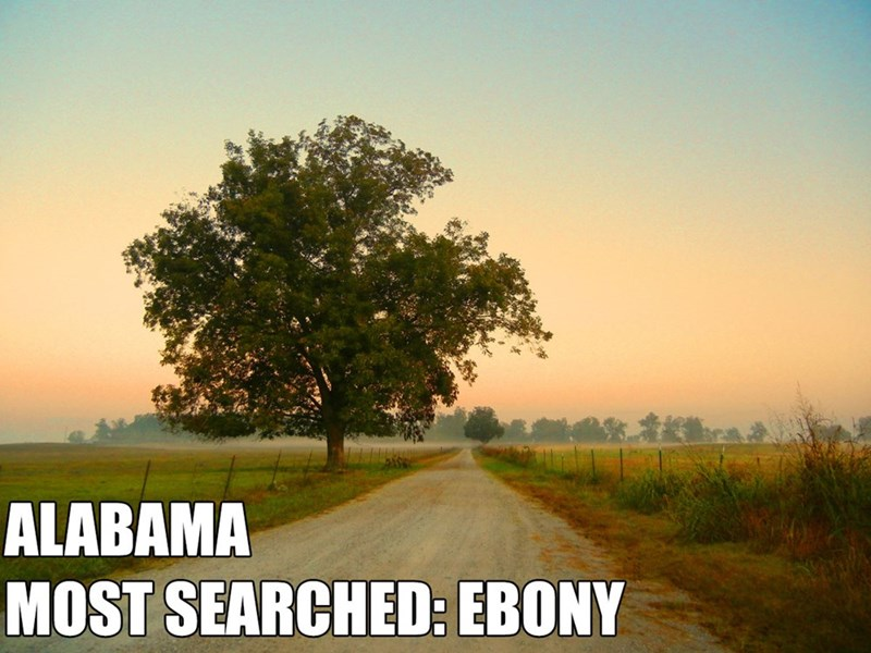 Most Searched Porn Term - Natural landscape - ALABAMA MOST SEARCHED: EBONY