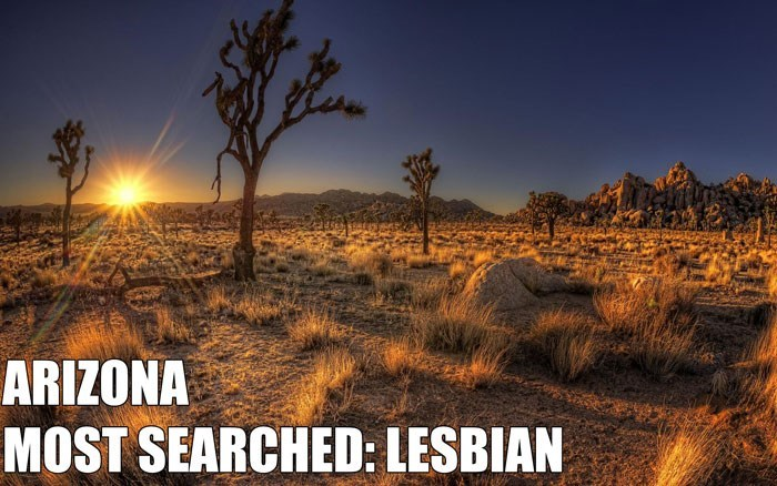 Most Searched Porn Term - Nature - ARIZONA MOST SEARCHED: LESBIAN