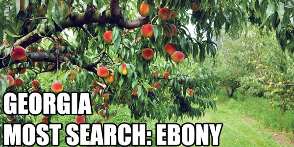 Most Searched Porn Term - Plant - GEORGIA MOST SEARCH:EBONY