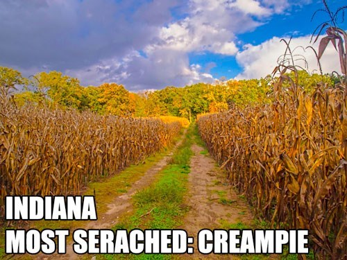 Most Searched Porn Term - Natural landscape - INDIANA MOST SERACHED: CREAMPIE