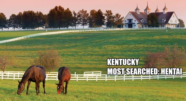 Most Searched Porn Term - Horse - KENTUCKY MOST SEARCHED:HENTAI