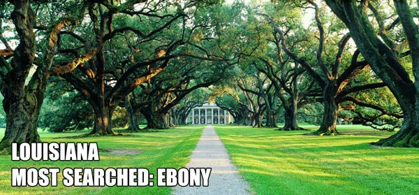 Most Searched Porn Term - Natural landscape - LOUISIANA MOST SEARCHED:EBONY