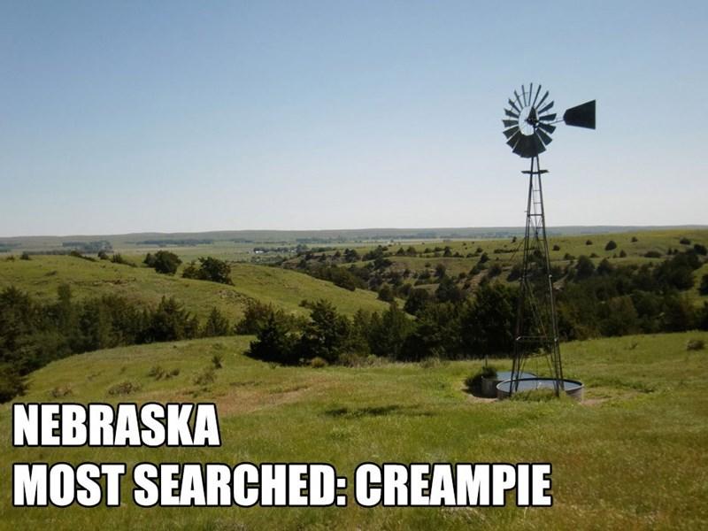 Most Searched Porn Term - Grassland - NEBRASKA MOST SEARCHED: CREAMPIE