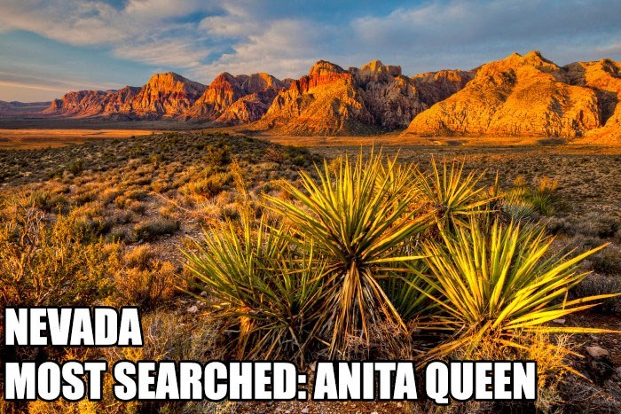 Most Searched Porn Term - Nature - NEVADA MOST SEARCHED:ANITA QUEEN