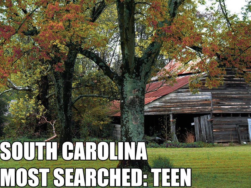 Most Searched Porn Term - Tree - SOUTH CAROLINA MOST SEARCHED: TEEN