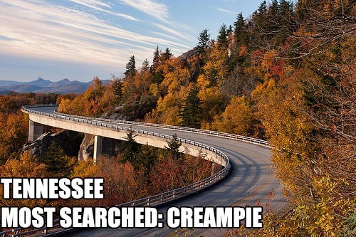 Most Searched Porn Term - Bridge - TENNESSEE MOST SEARCHED: CREAMPIE