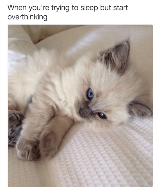 Cat - When you're trying to sleep but start overthinking
