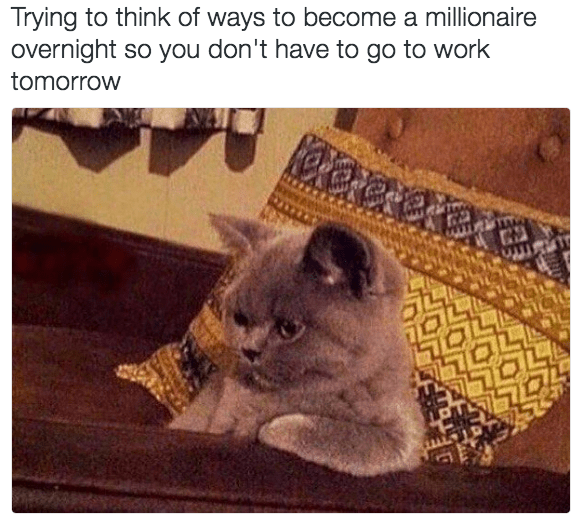 Cat - Trying to think of ways to become a millionaire overnight so you don't have to go to work tomorrow