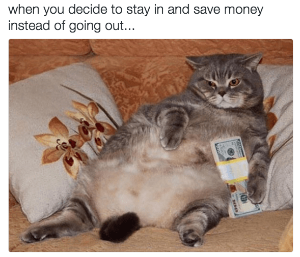 Cat - when you decide to stay in and save money instead of going out...
