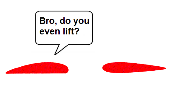 Text - Bro, do you even lift?