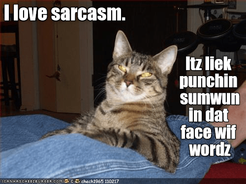 cat face punching words love caption sarcasm - 9009530112