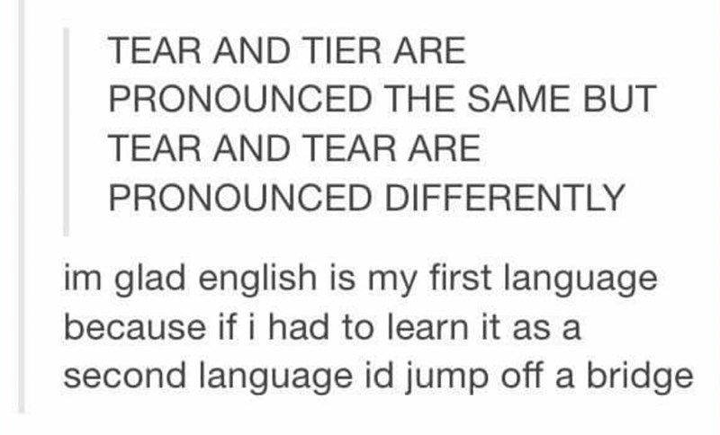 Text - TEAR AND TIER ARE PRONOUNCED THE SAME BUT TEAR AND TEAR ARE PRONOUNCED DIFFERENTLY im glad english is my first language because if i had to learn it as a second language id jump off a bridge