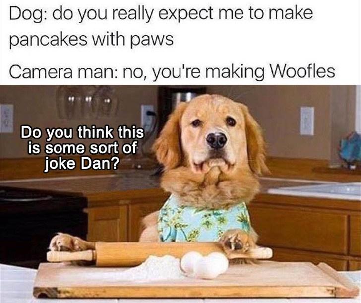Horrible pun dank meme of baking dog show