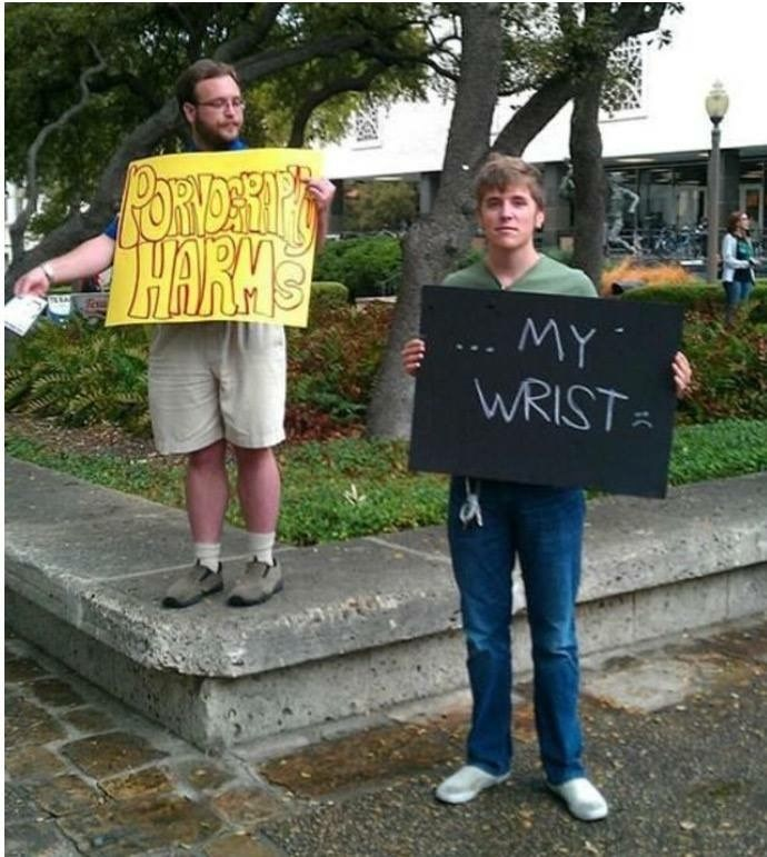Dank meme of a protestor hodling a sign that says 'pornography harms' and another protester is holding a sign MY WRISTS