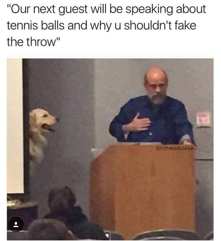 Dank meme of guest speaker dog.