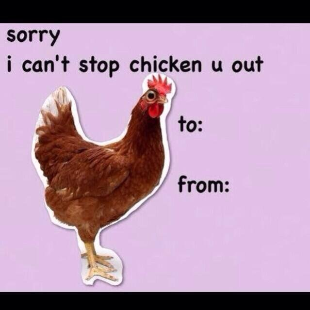 Chicken - sorry i can't stop chicken u out to: from:
