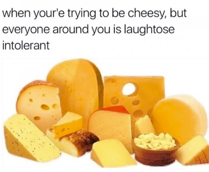 Cheese - when your'e trying to be cheesy, but everyone around you is laughtose intolerant