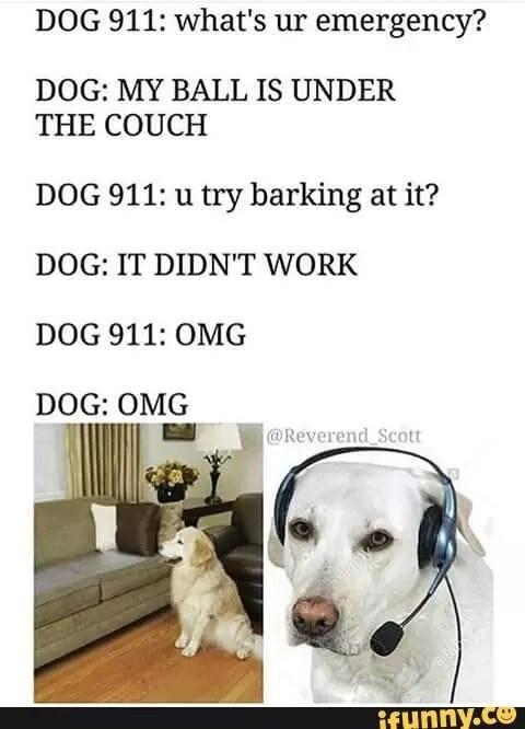 Dank meme about calling dog 911 when ball goes under the couch and barking at it doesn't help.