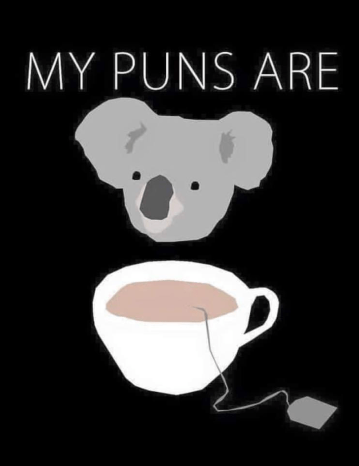 Dank meme that implies your puns are of high quality by having a Koala and a cup of tea.