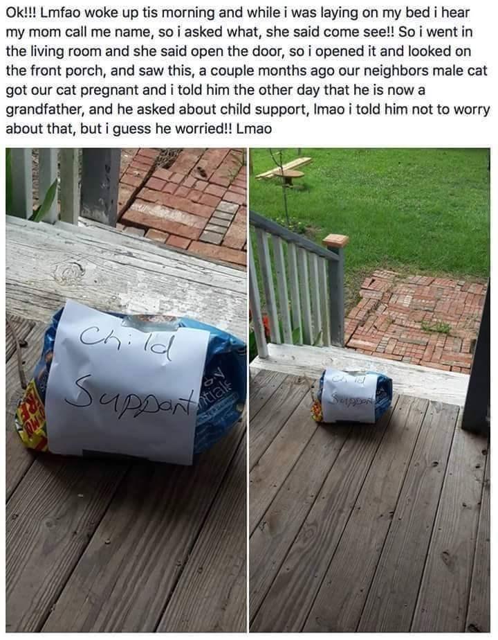 Child support dank meme