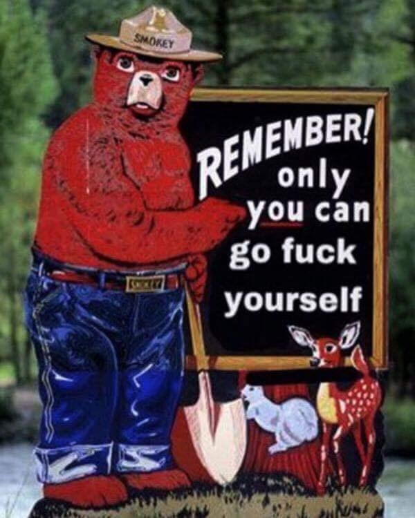 dank meme of Smoky the Bear