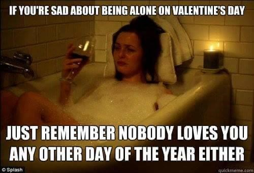 dank meme of feeling lonely on Valentine's day is stupid because no one loves you the rest of the year either.