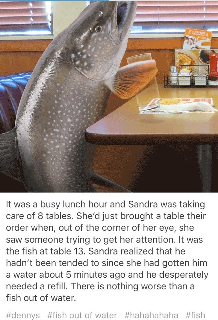 Fish - TS OFFICIAL It was a busy lunch hour and Sandra was taking care of 8 tables. She'd just brought a table their order when, out of the corner of her eye, she saw someone trying to get her attention. It was the fish at table 13. Sandra realized that he hadn't been tended to since she had gotten him a water about 5 minutes ago and he desperately needed a refill. There is nothing worse than a fish out of water. #dennys #fish out of water #hahahahaha #fish
