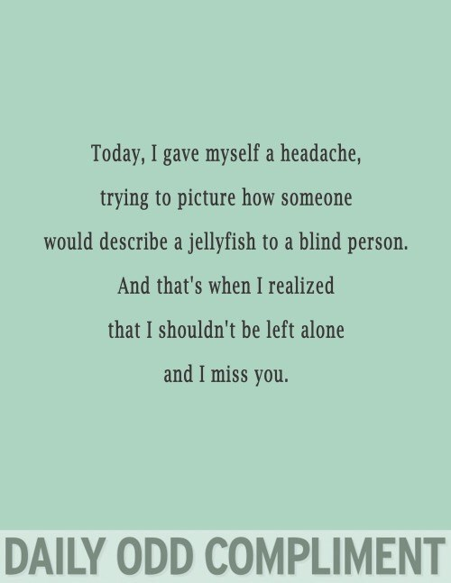 Text - Today, I gave myself a headache, trying to picture how someone would describe a jellyfish to a blind person. And that's when I realized that I shouldn't be left alone and I miss you. DAILY ODD COMPLIMENT