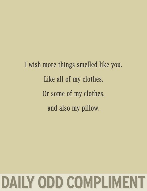 Text - I wish more things smelled like you. Like all of my clothes. Or some of my clothes, and also my pillow. DAILY ODD COMPLIMENT