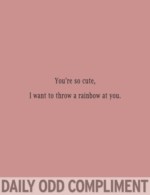 Text - You're so cute, I want to throw a rainbow at you. DAILY ODD COMPLIMENT