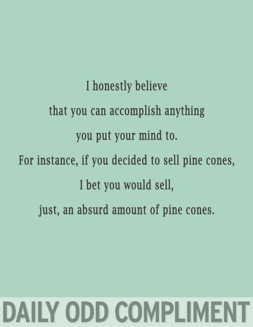 Text - I honestly believe that you can accomplish anything you put your mind to. For instance, if you decided to sell pine cones, I bet you would sell, just, an absurd amount of pine cones. DAILY ODD COMPLIMENT