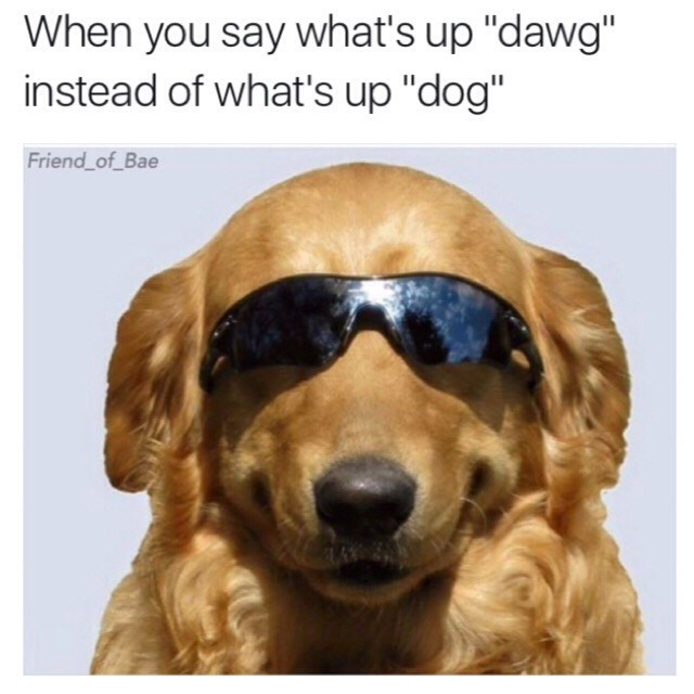 """Dog - When you say what's up """"dawg"""" instead of what's up """"dog"""" Friend of_Bae"""