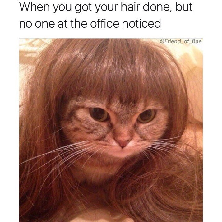 Hair - When you got your hair done, but no one at the office noticed @Friend_of_Bae