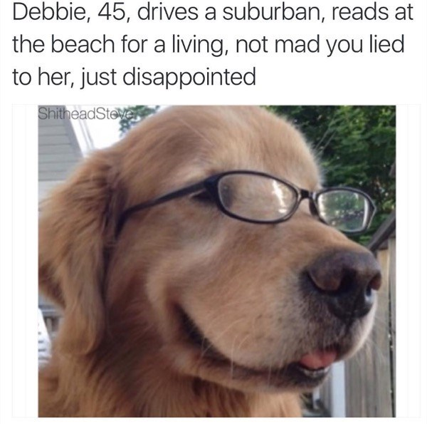 Dog - Debbie, 45, drives a suburban, reads at the beach for a living, not mad you lied to her, just disappointed ShitheadSteve
