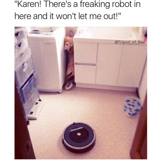 """Product - """"Karen! There's a freaking robot in here and it won't let me out!"""" Friend of Bae"""