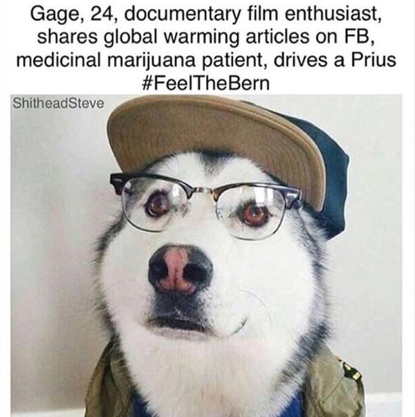 Dog - Gage, 24, documentary film enthusiast, shares global warming articles on FB, medicinal marijuana patient, drives a Prius #FeelTheBern ShitheadSteve
