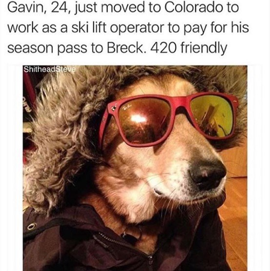 Eyewear - Gavin, 24, just moved to Colorado to work as a ski lift operator to pay for his season pass to Breck. 420 friendly ShitheadSteve