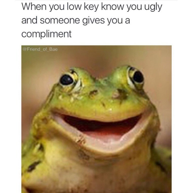 Frog - When you low key know you ugly and someone gives you a compliment @Friend of Bae