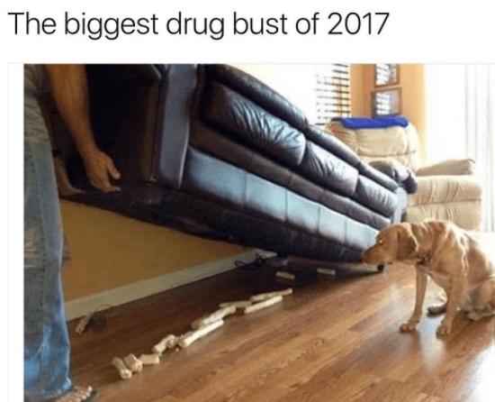Floor - The biggest drug bust of 2017