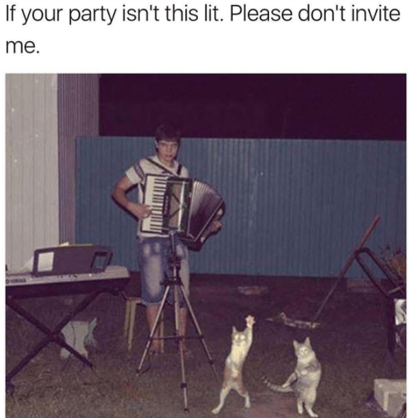 Canidae - If your party isn't this lit. Please don't invite me.
