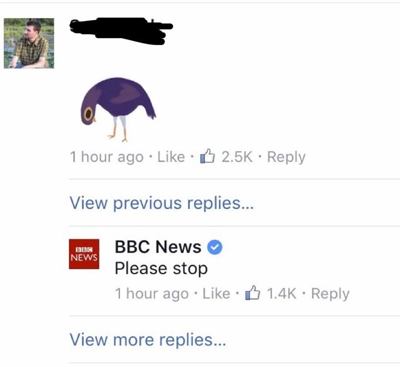 Text - 1 hour ago Like 2.5K Reply View previous replies... BBC News NEWS Please stop 1 hour ago Like 1.4K Reply View more replies...