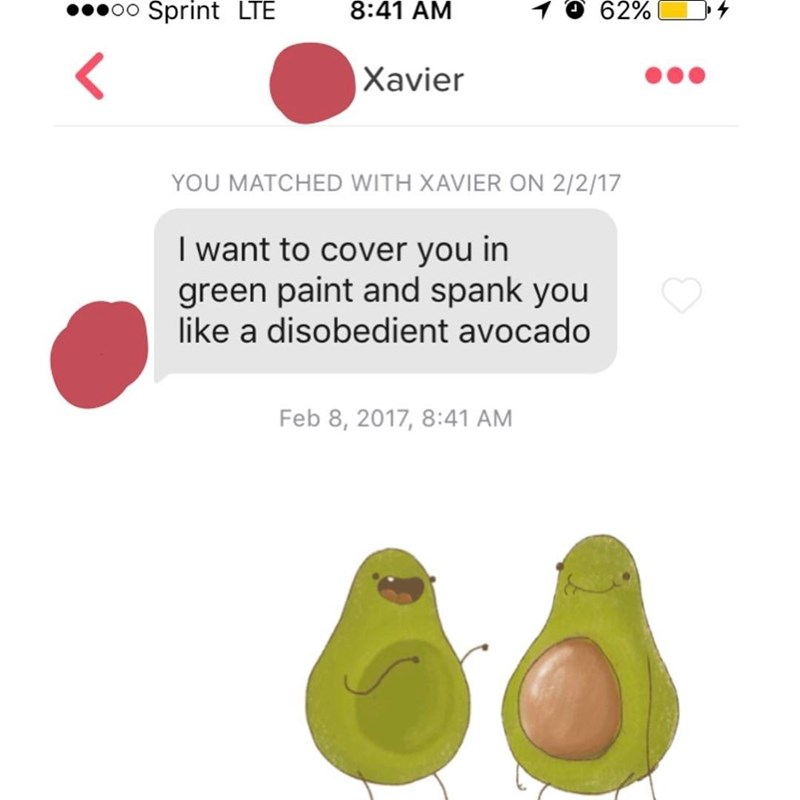 Nose - 0o Sprint LTE 8:41 AM 62% Xavier YOU MATCHED WITH XAVIER ON 2/2/17 I want to cover you in green paint and spank you like a disobedient avocado Feb 8, 2017, 8:41 AM