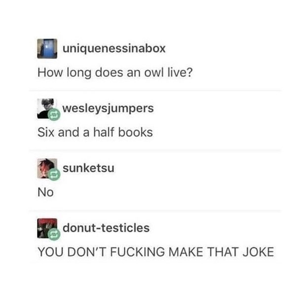 Text - uniquenessinabox How long does an owl live? wesleysjumpers Six and a half books sunketsu No donut-testicles YOU DON'T FUCKING MAKE THAT JOKE