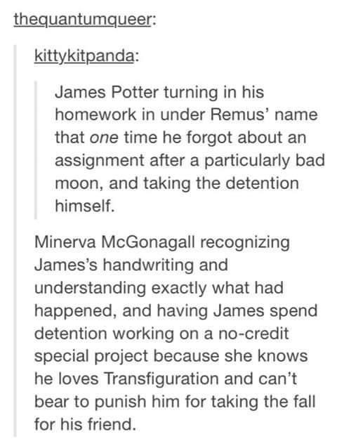 Text - thequantumqueer: kittykitpanda: James Potter turning in his homework in under Remus' name that one time he forgot about an assignment after a particularly bad moon, and taking the detention himself. Minerva McGonagall recognizing James's handwriting and understanding exactly what had happened, and having James spend detention working on a no-credit special project because she knows he loves Transfiguration and can't bear to punish him for taking the fall for his friend.