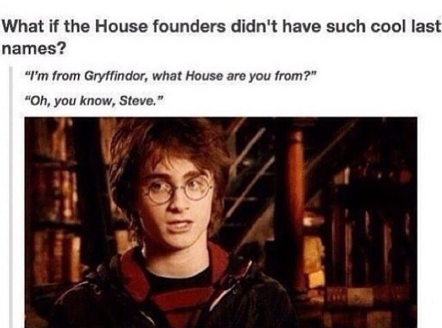 """Text - What if the House founders didn't have such cool last names? """"I'm from Gryffindor, what House are you from?"""" """"Oh, you know, Steve."""""""