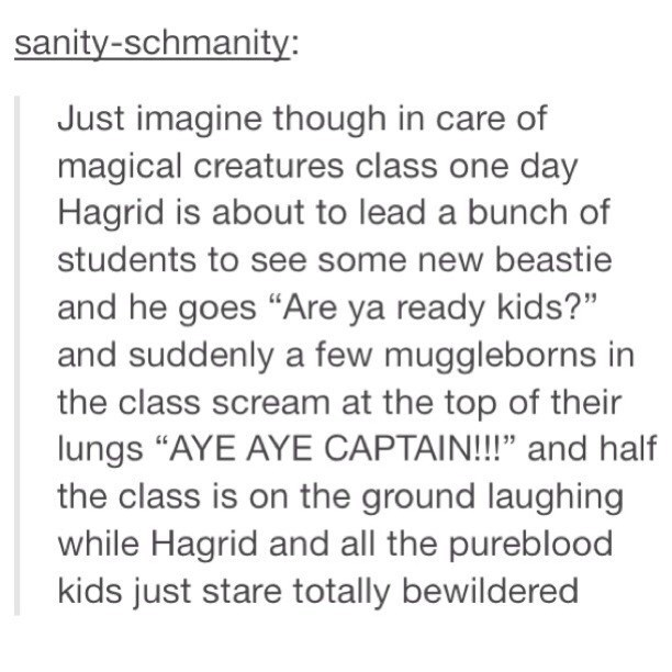 """Text - sanity-schmanity: Just imagine though in care of magical creatures class one day Hagrid is about to lead a bunch of students to see some new beastie and he goes """"Are ya ready kids?"""" and suddenly a few muggleborns in the class scream at the top of their lungs """"AYE AYE CAPTAIN!!!"""" and half the class is on the ground laughing while Hagrid and all the pureblood kids just stare totally bewildered"""