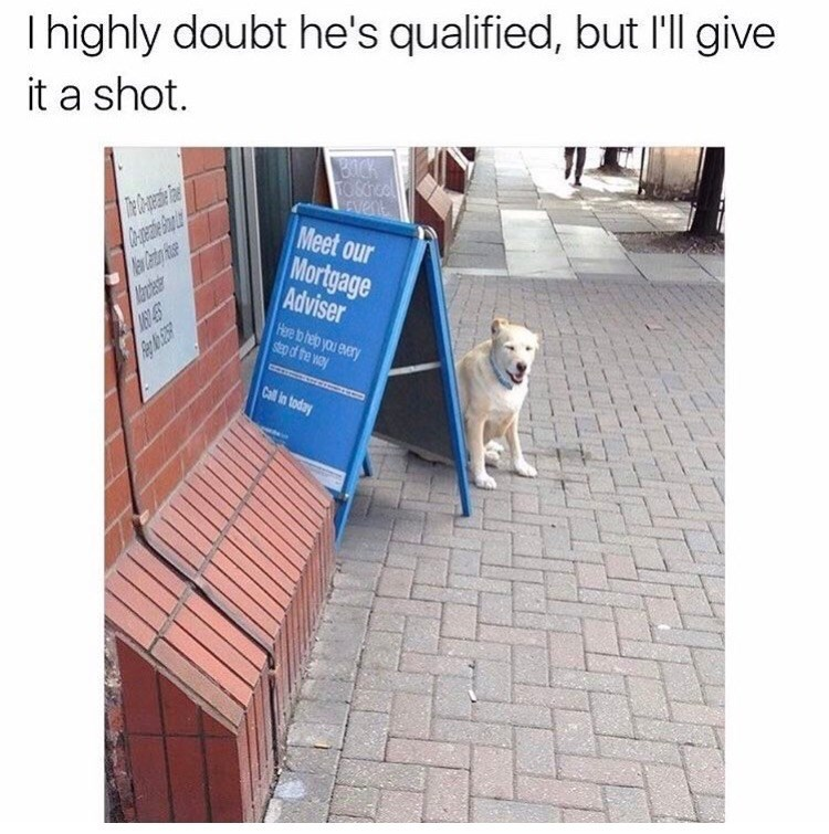 Text - I highly doubt he's qualified, but l'll give it a shot. OCK TO SChool CENere Meet our Mortgage Adviser Aaoese Here to help you every step of the way Call in today