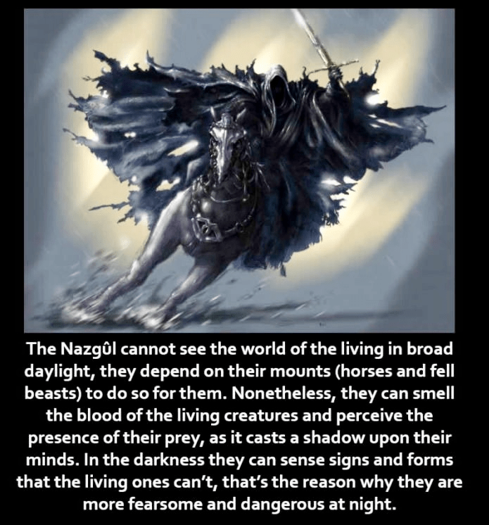Text - The Nazgôl cannot see the world of the living in broad daylight, they depend on their mounts (horses and fell beasts) to do so for them. Nonetheless, they can smell the blood of the living creatures and perceive the presence of their prey, as it casts a shad ow upon their minds. In the darkness they can sense signs and forms that the living ones can't, that's the reason why they are more fearsome and dangerous at night.