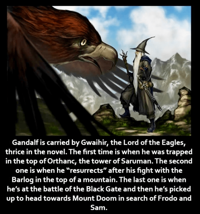 """Photo caption - Gandalf is carried by Gwaihir, the Lord of the Eagles, thrice in the novel. The first time is when he was trapped in the top of Orthanc, the tower of Saruman. The second one is when he """"resurrects"""" after his fight with the Barlog in the top of a mountain. The last one is when he's at the battle of the Black Gate and then he's picked up to head towards Mount Doom in search of Frodo and Sam."""